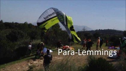 Para-Lemmings