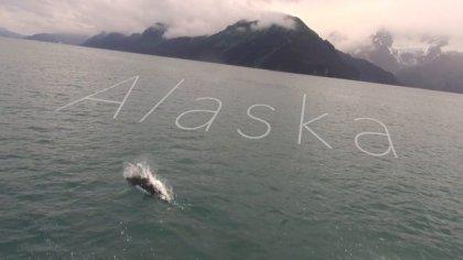 Max Alaska Trip