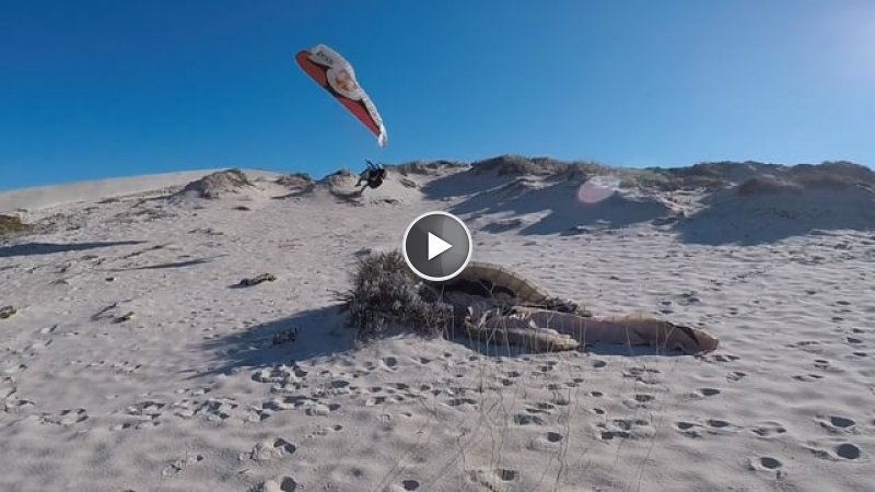 The Danger Dunes Wagga Paragliding In Portugal